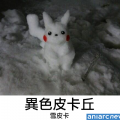 在雪地發現了神奇寶貝~
